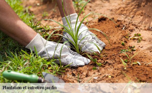Entretien de jardin Hauts de seine tél: 01 76 28 32 70